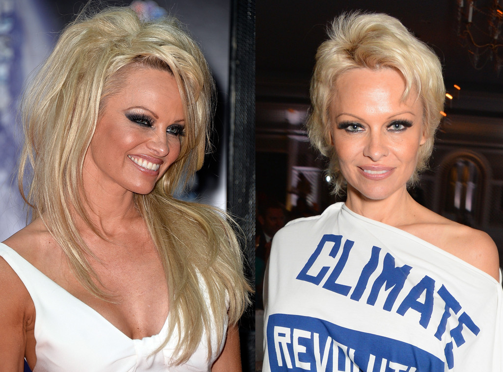 Images Of Pamela Anderson 2017 Haircut Spacehero